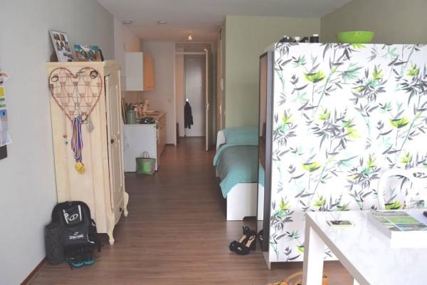 Woonkamer en slaapkamer in één.